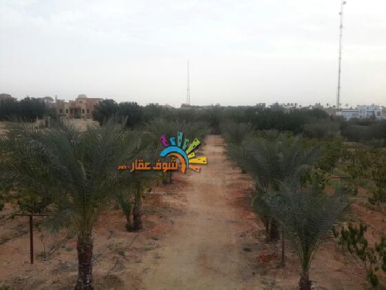 اراضي للبيع في 6 اكتوبر - للبيع (3) فدادين  بطريق مصر اسكندريه الصحراوى